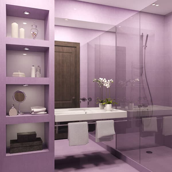 Bathroom paint ideas minneapolis painters for Bathroom painting designs