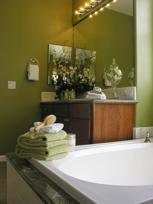 Dark Colors - Bathroom Paint Ideas