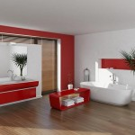 bathroom red accents